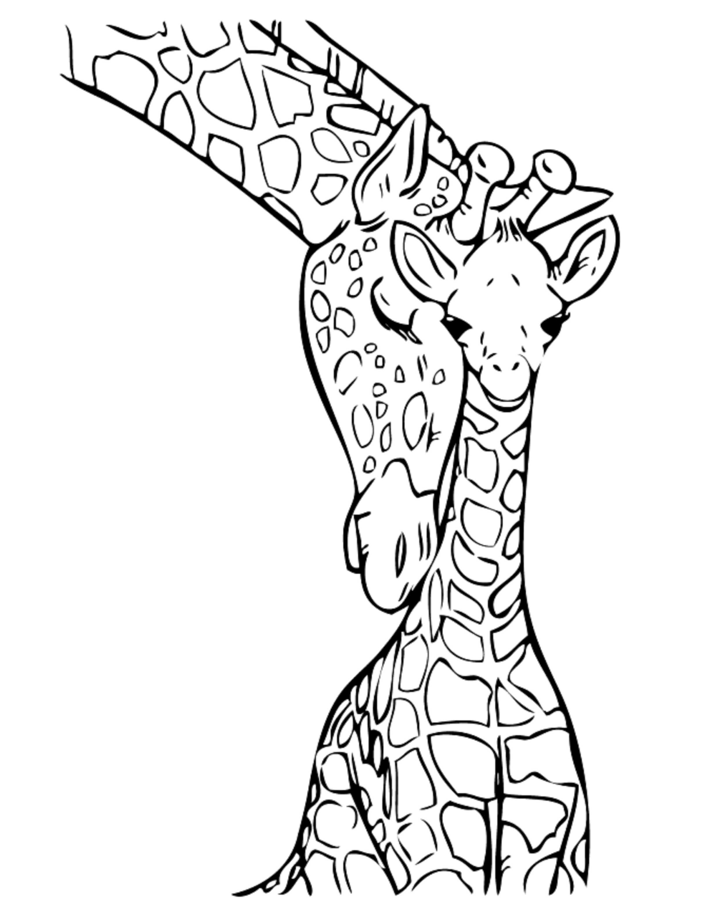 picture regarding Giraffe Printable known as Kid Giraffe Drawing No cost obtain simplest Youngster Giraffe