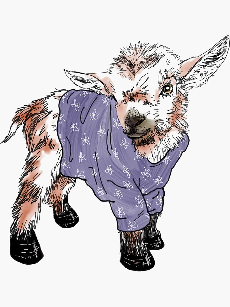 Baby Goat Drawing