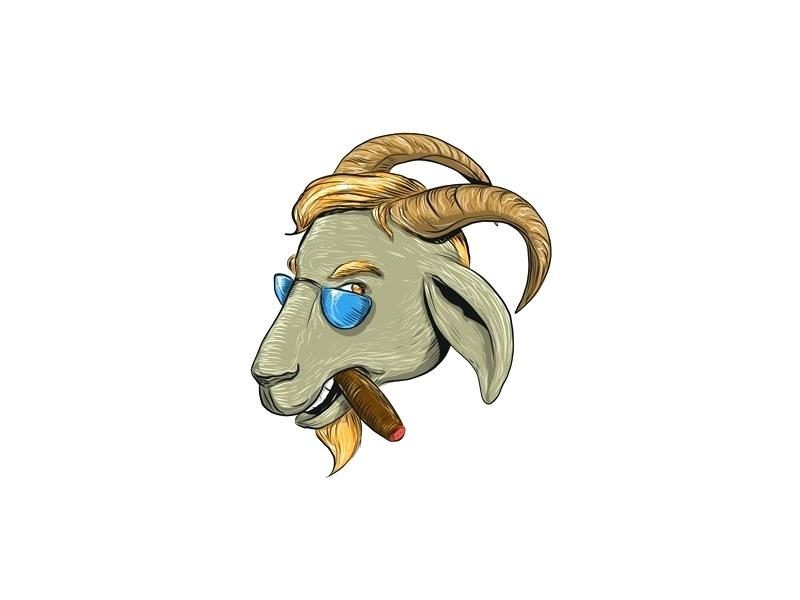 800x600 goat drawing goat face drawing google search baby goat face