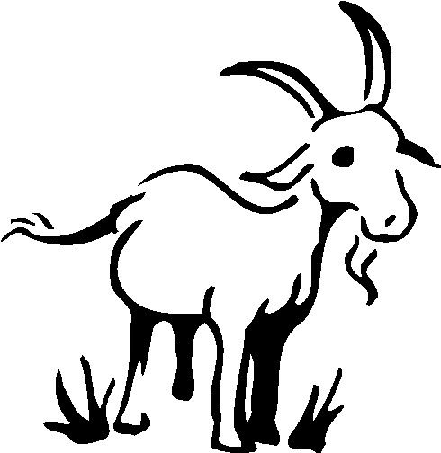 490x504 Goat Drawing Vintage Clipart Free