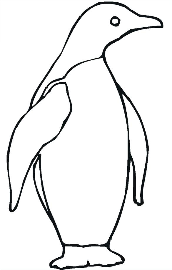 585x918 easy penguin drawing how to draw a penguin easy easy baby penguin