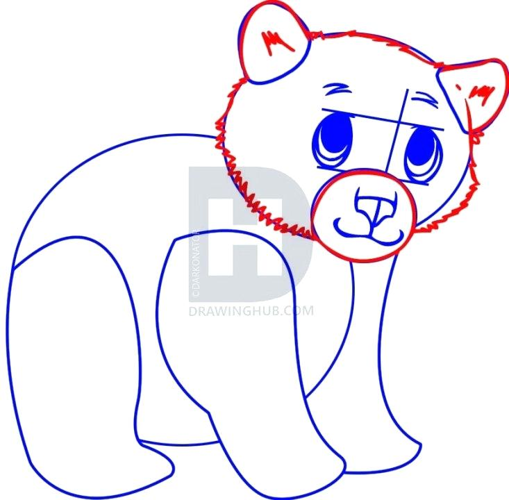 733x720 bear cub drawing polar bear cub polar bear cub drawing easy
