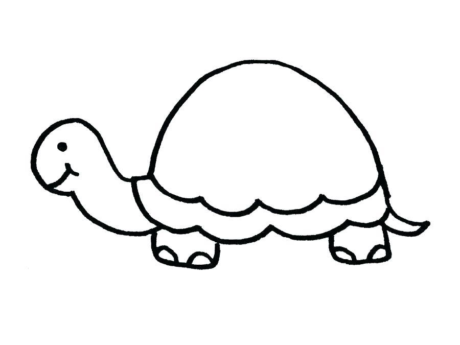 900x675 Cool Sea Turtle Template Baby Turtles Printables Easy Tattoos