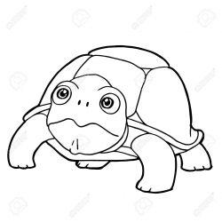 250x250 Cute Sea Turtle Drawing A Face Tutorial Ninja Code I Fertility