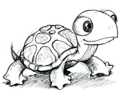 400x318 How To Draw A Cute Turtle Cute Turtle Drawing Cute Drawing