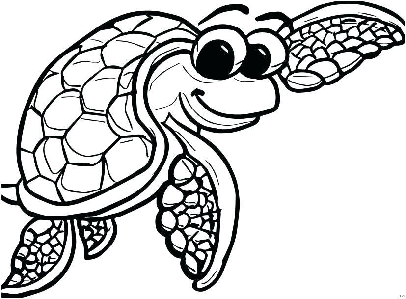 827x609 Sea Turtle Coloring