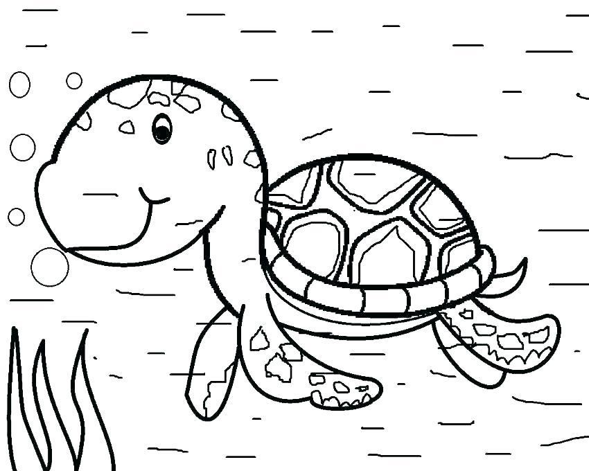 850x680 Sea Turtle Coloring
