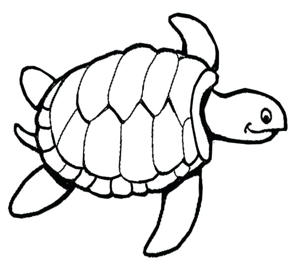 600x539 Sea Turtles Coloring Pages Printable Sea Turtle Coloring