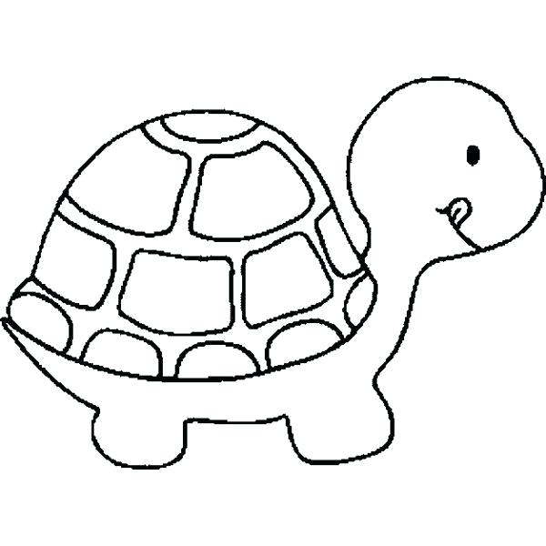 600x600 Sea Turtles Drawing Turtle Outline Printable Coloring Images