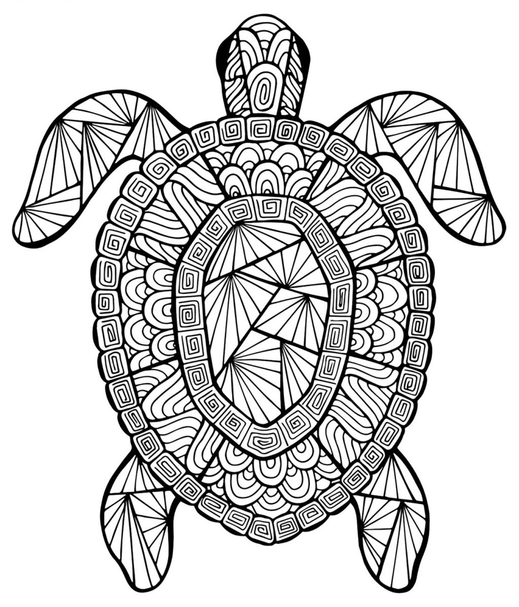 1024x1198 Coloring Pages Baby Ocean Animals Coloring