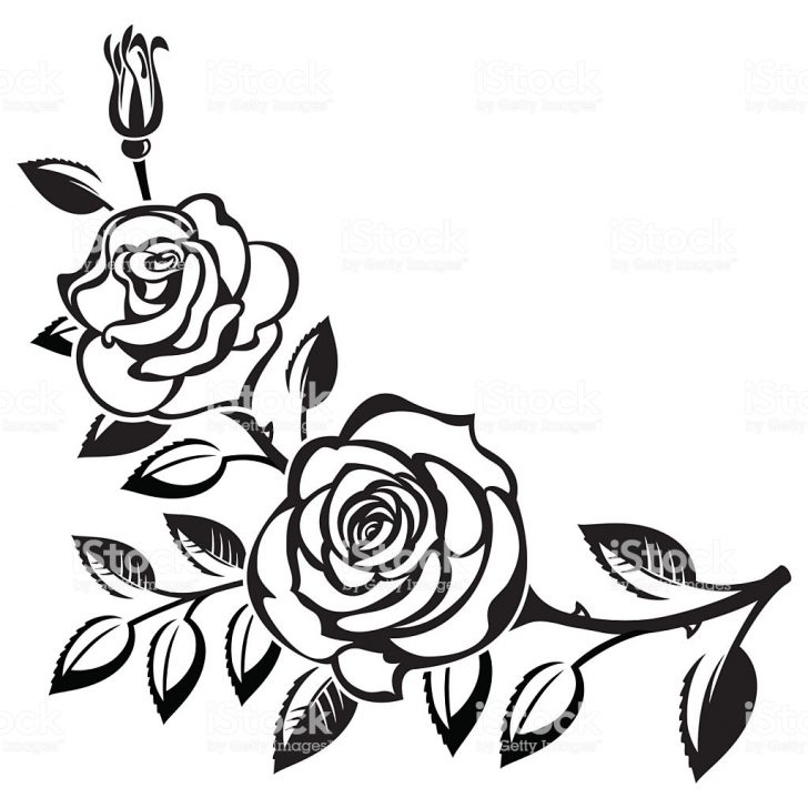 728x728 Black And White Rose Drawing Tattoo Skull Simple Clip Art Flowers
