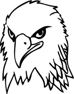 Bald Eagle Drawing   Free download best Bald Eagle Drawing