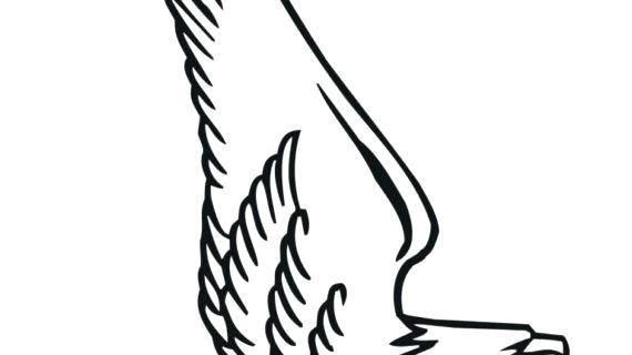 570x320 bald eagle outline bird of prey bald eagle outline drawing