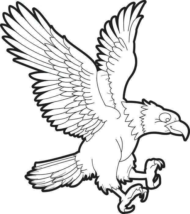 622x700 eagle template animal templates free premium templates bald eagle