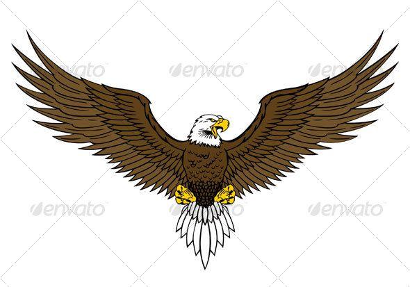 590x413 bald eagle drawings bald eagle illustration