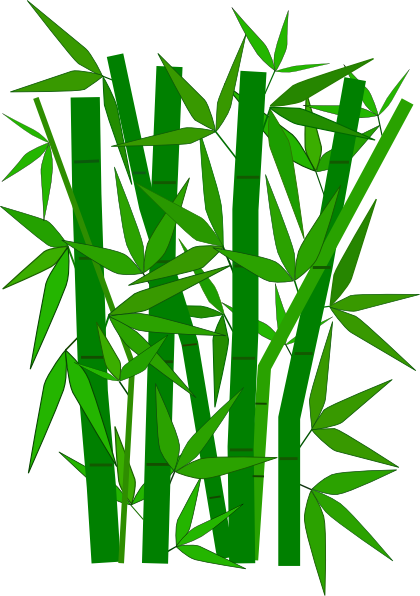 420x596 bamboo leaves bamboo clip art nature french education