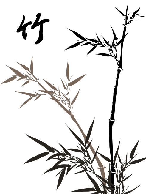 490x653 Bamboo Drawing Free Download