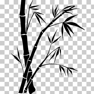 310x310 Bambou Paper Drawing Bamboo Png Clipart Free Cliparts Uihere