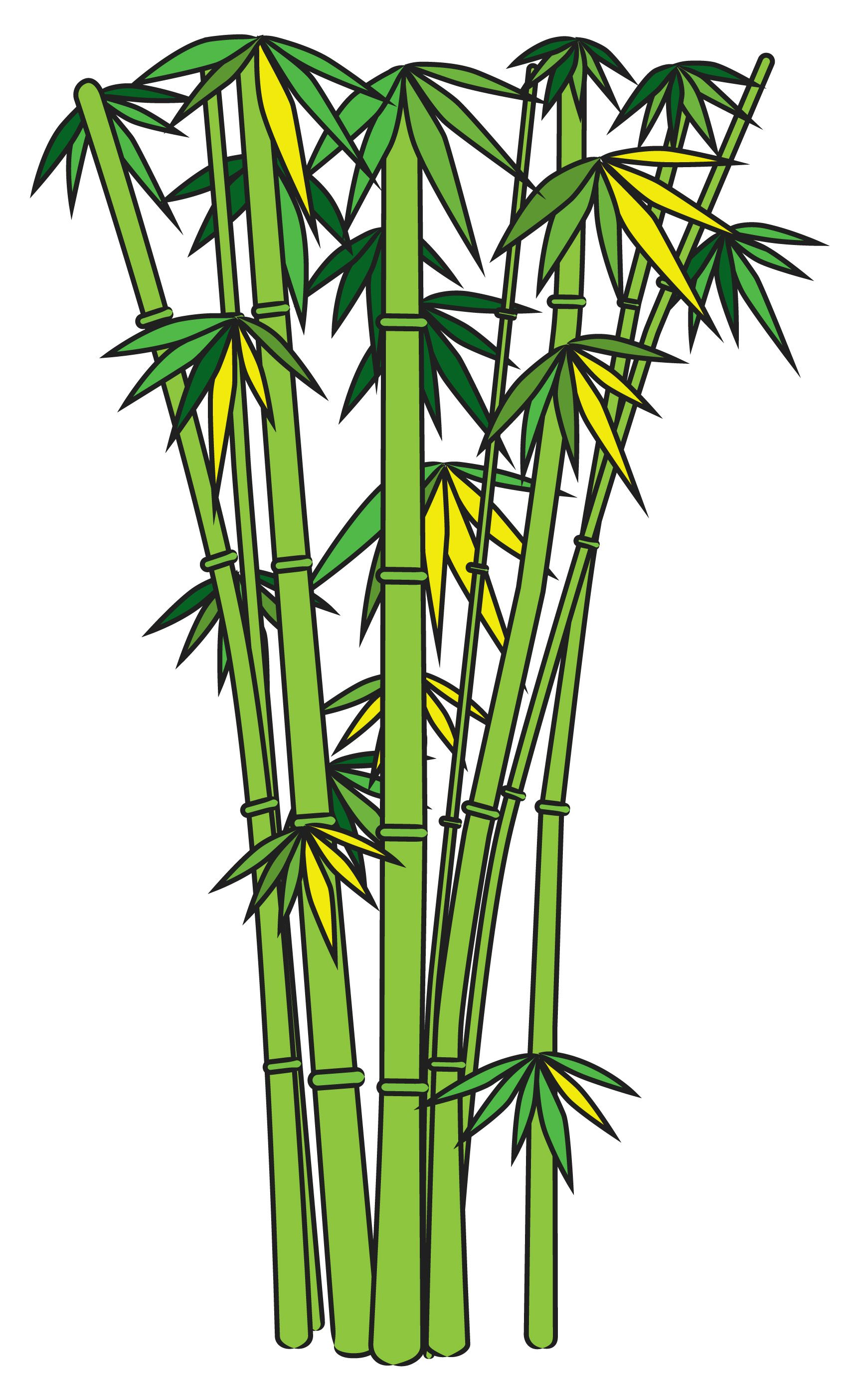 1741x2802 draw bamboo creative bamboo drawing, panda drawing, garden drawing
