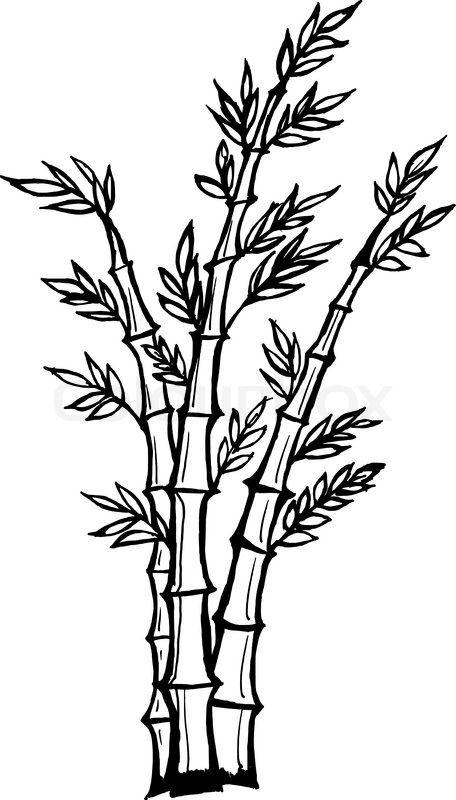 456x800 Cartoon Bamboo Tree Drawing Stock Vector Of 'hand Drawn, Vector