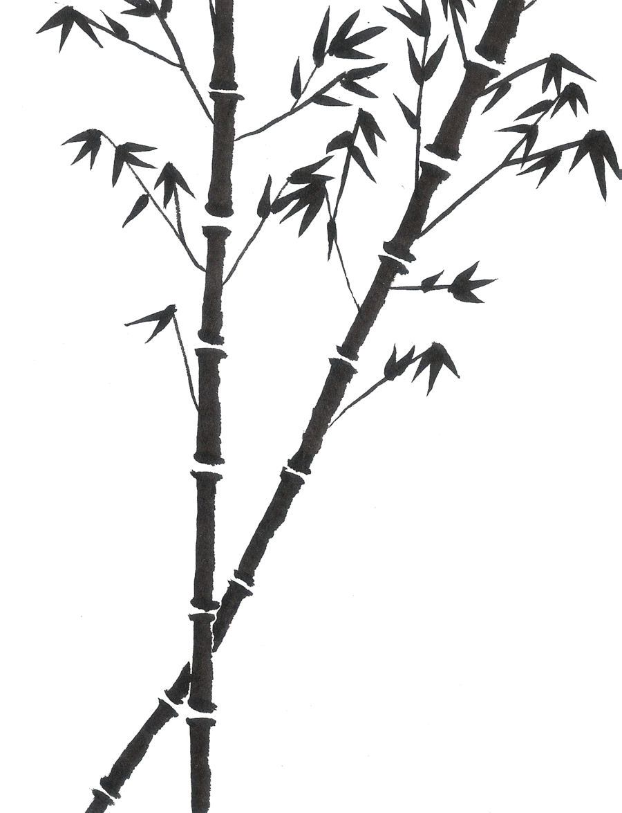 900x1175 Bamboo, Drawing, Painting, Transparent Png Image Clipart Free