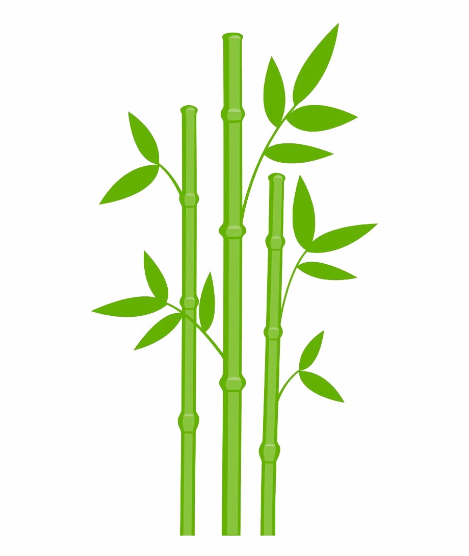 920x1090 Bamboo Drawing Leaves