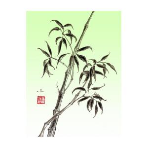 300x300 Bamboo Drawing Mixed Media