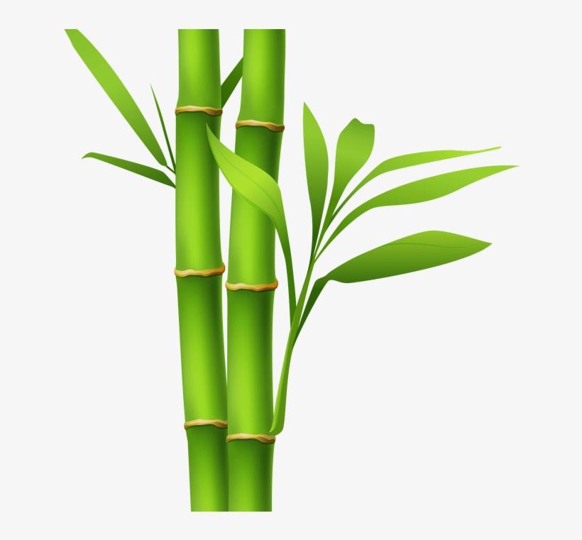820x761 Bamboo Drawing Painting