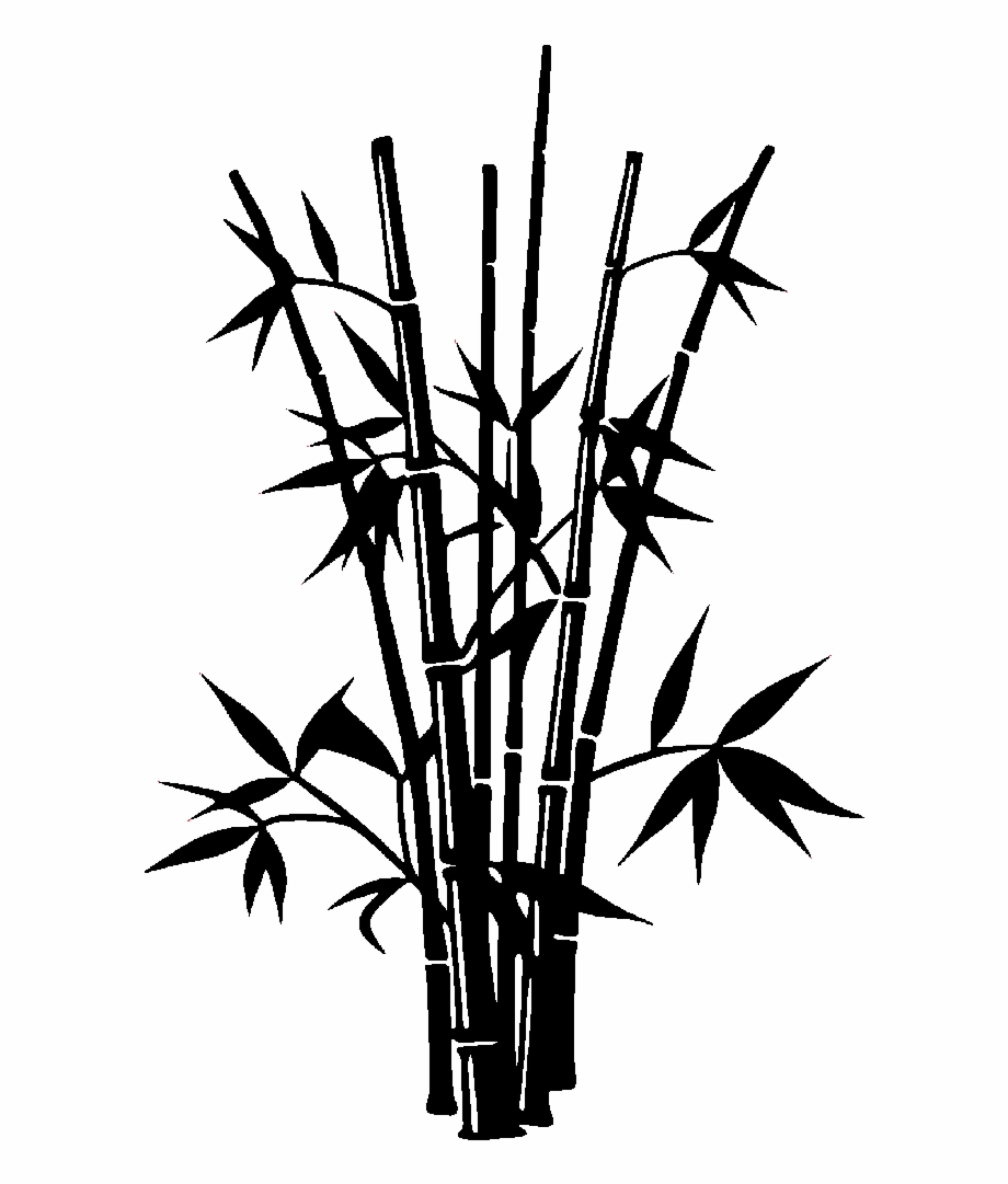 920x1081 Bamboo Drawing Silhouette