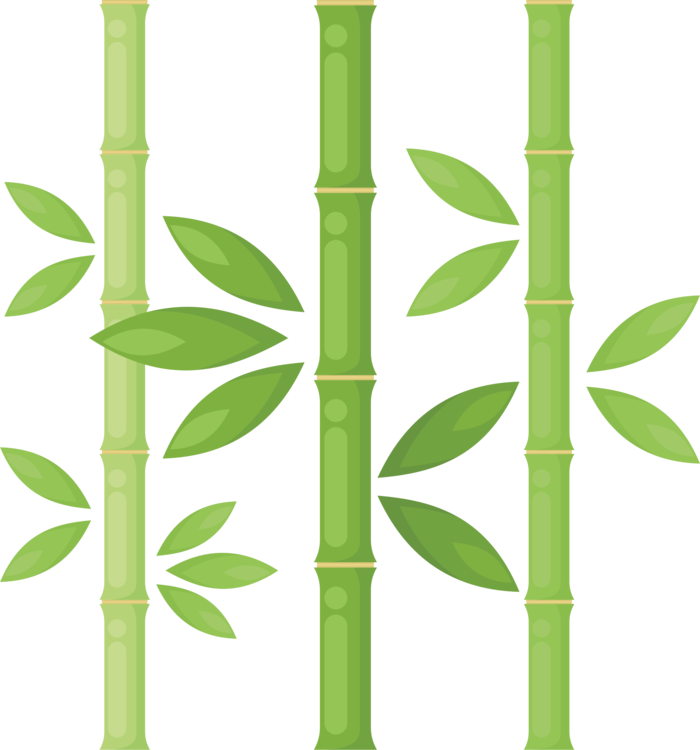 700x750 Bamboo Plants Drawing Tree Plant Stem Cc0