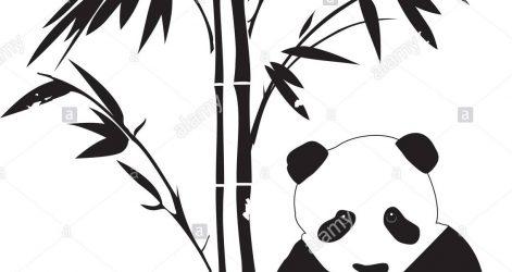 471x250 Bamboo Tree Cad Drawing Digital Charcoal Bridge Easy House Cartoon