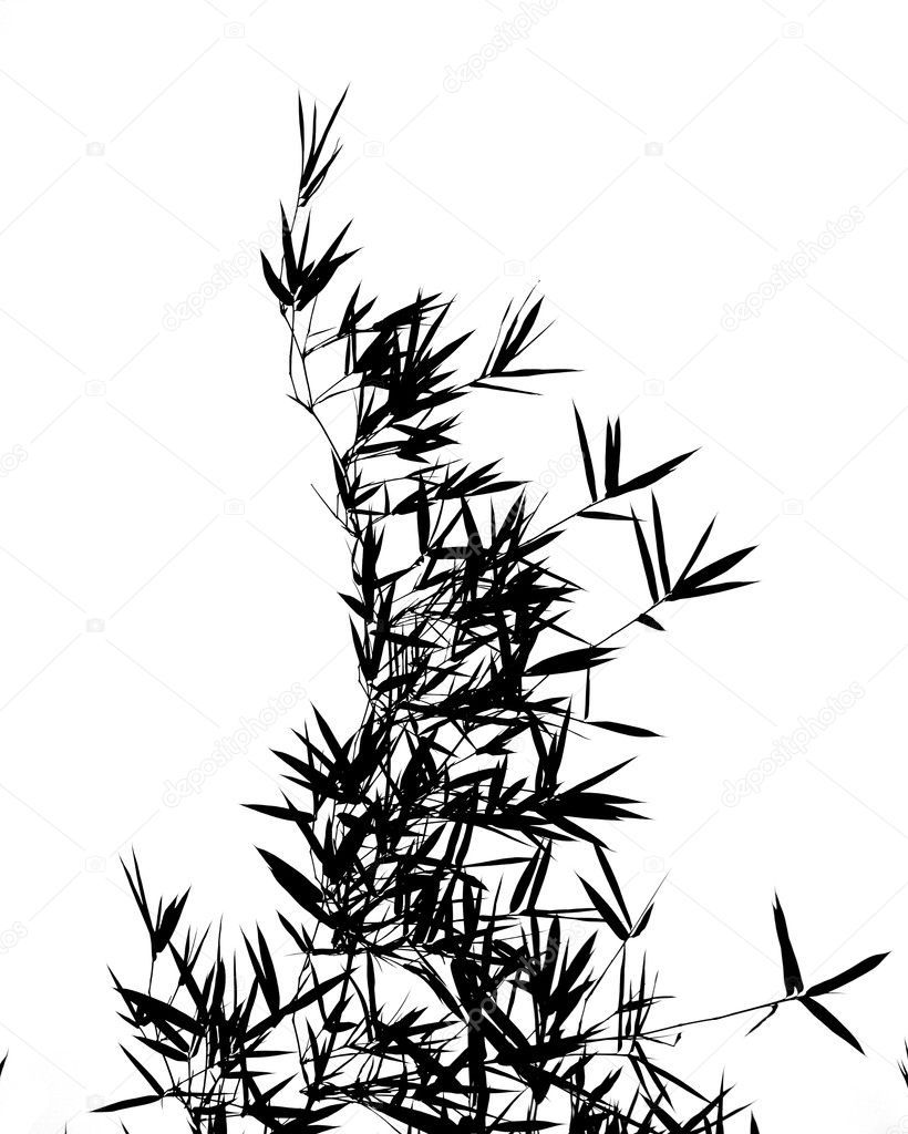 820x1024 Bamboo Tree Outline Tree Silhouettes Clip Art Tree Silhouette