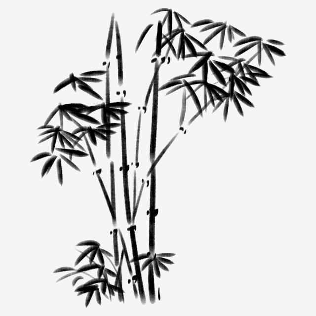 640x640 black plant beautiful bamboo hand painted bamboo cartoon bamboo