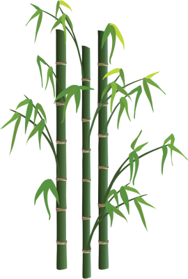 270x400 Collection Of Free Bamboo Drawing Plant Download On Ui Ex