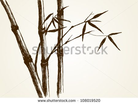 450x339 Sketch Illustration Of Bamboo Tree Art In Bamboo Tree