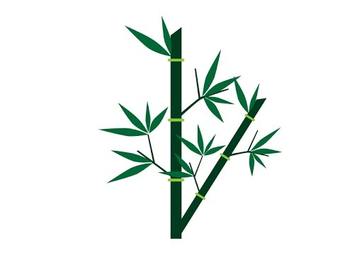 480x360 Tutorial Adobe Illustrator How To Make Bamboo