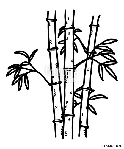 417x500 Bamboo Cartoon Vector And Illustration, Black And White, Hand