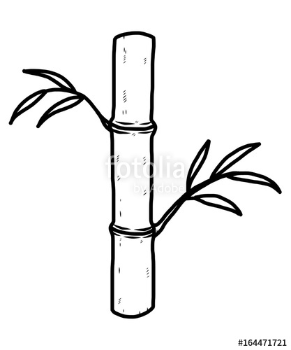 417x500 Bamboo Tree Cartoon Vector And Illustration, Black And White