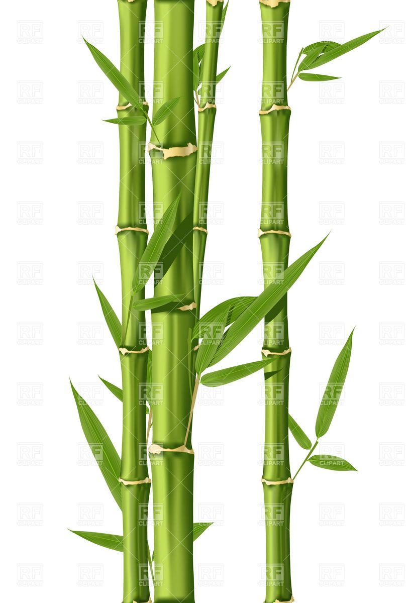 814x1200 bamboo sketches in good luck symbols, bamboo drawing