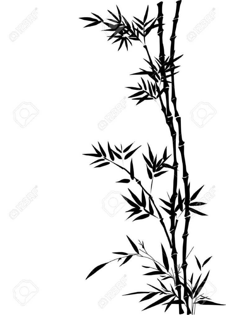 728x1012 Bamboo Cartoon Drawing Tablet Driver Box Tree Black And White