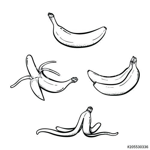 500x500 banana drawing cute cartoon banana character banana tree drawing