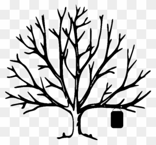 320x297 bare tree clip art free bare tree clipart