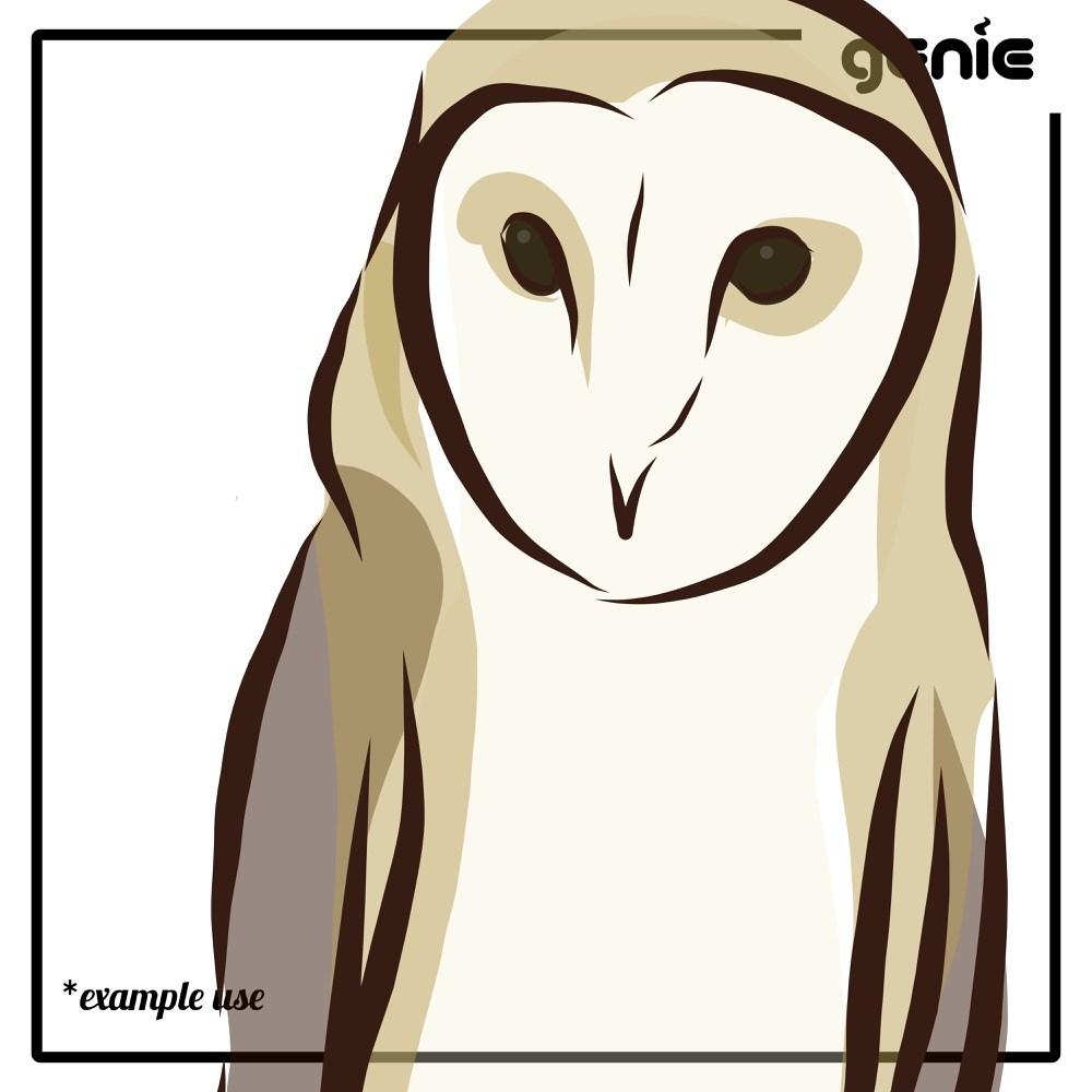 1000x1000 Barn Vorondolo Bird Vector Graphic Illustration Hand Nalaina