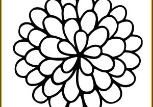 300x210 flower basic drawing basic flower drawings basic drawing of flower