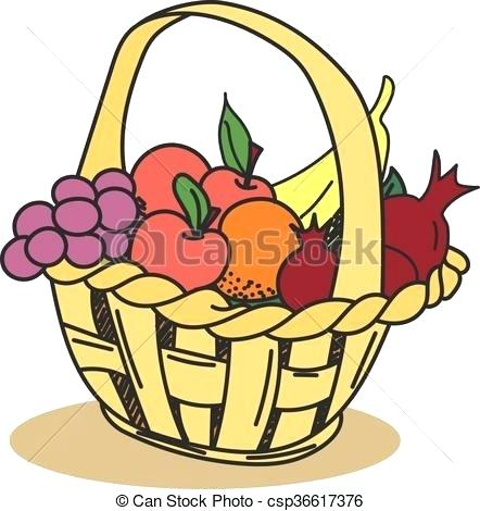 442x470 A Basket Of Fruits Drawing