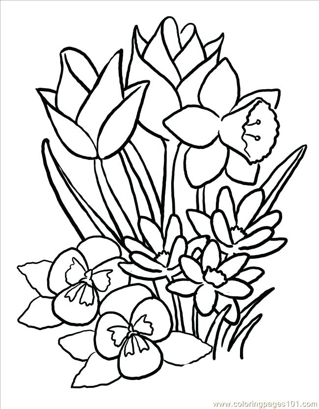 650x835 Flower Basket Coloring Pages Spring Basket Coloring