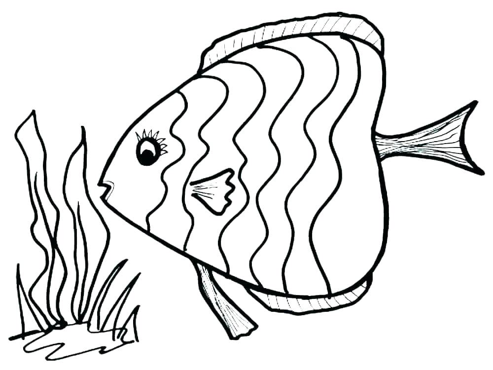1000x750 bass fish coloring pages bass fish coloring pages bass fish