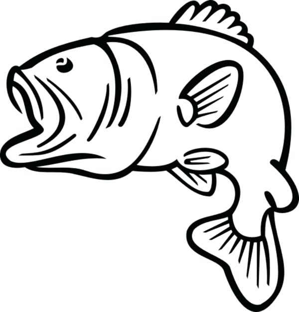 600x626 outline fish outline fish pixel perfect vector icon outline