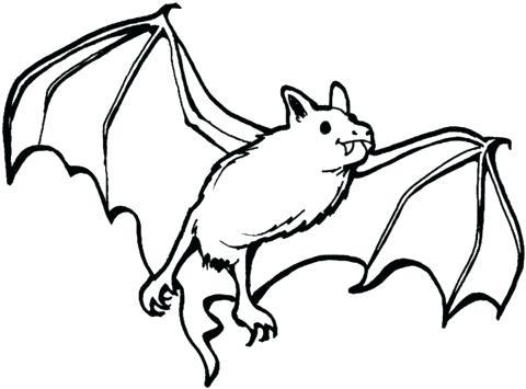 480x355 vampire bat drawing draw vampire bat vampire bat cartoon drawing