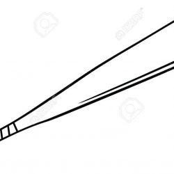 Bat Drawing Outline | Free download best Bat Drawing Outline